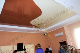 натяжные потолки в зале цена, фото