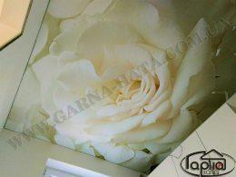 натяжные потолки с рисунком цветов