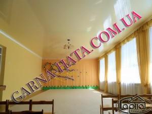 Натяжні стелі актовий зал, фото