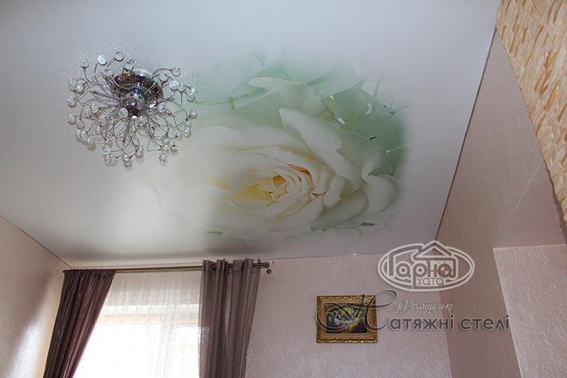 матовый натяжной потолок цветок