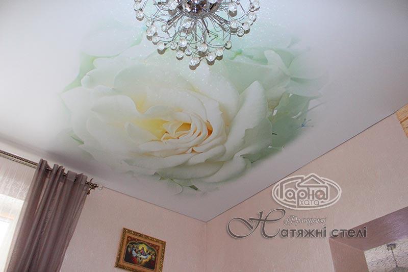 матовые натяжные потолки с цветами