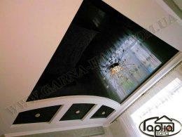натяжные потолки львов фото