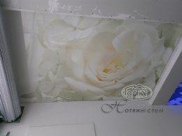 натяжна стеля з малюнком, квітів в Парижі