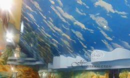 небо на натяжном потолке в Поддубцах