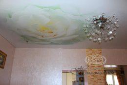 матовый натяжной потолок цветок рисунок