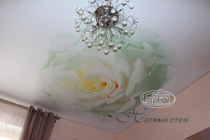 натяжные потолки в зале с цветком