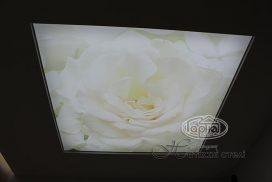 натяжной потолок фотопечать прозрачная пленка
