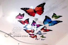 натяжні стелі з фотодруком метелики