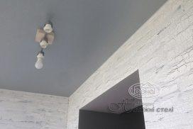 матовые натяжные потолки декор