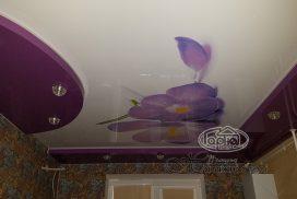 двухуровневый потолок натяжной рисунок