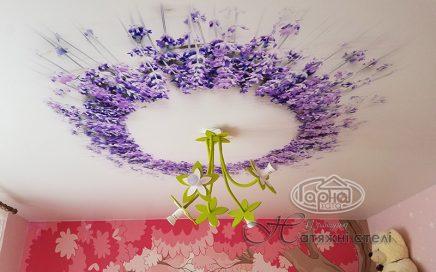 матовый натяжной потолок фотопечать цветы, квартира