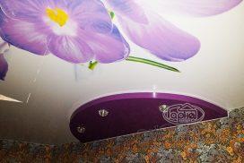 дизайн стелі з квітами