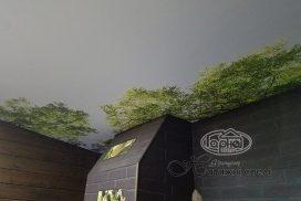 фотодрук на стелі в домі з брусу