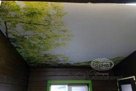 фотодрук натяжні стелі в домі з брусу