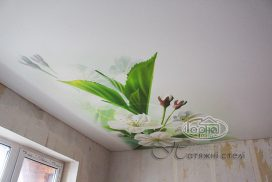 фотодрук натяжних стель, квіти