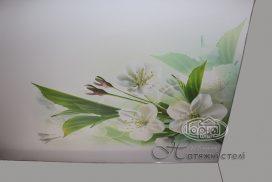 фотодрук стелі, квіти