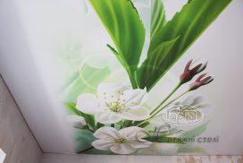 малюнок на стелі, квіти
