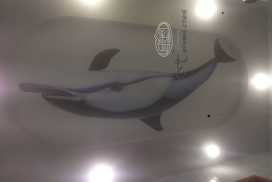натяжна стеля фотодрук, дельфін