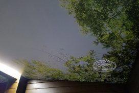 натяжна стеля з фотодруком в хаті