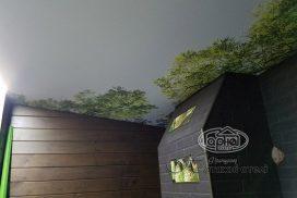 стелі фотодрук дім з брусу
