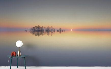 Lake Mattamuskeet List